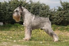 Athos-1