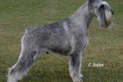 Athos-4